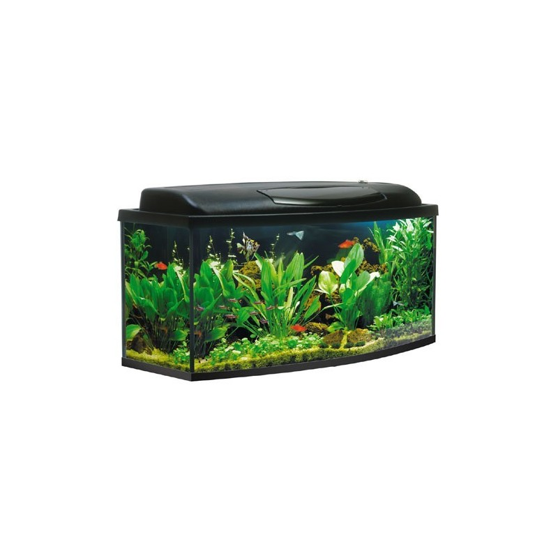 aquarium kit 200 litres jm distribution