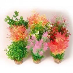 Plante medium 20cm